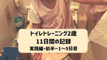 トイレトレーニング2歳・11日間の記録-実践編・前半-1~5日目