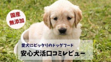 安心犬活口コミレビュー!国産で安心愛犬にピッタリのドッグフード
