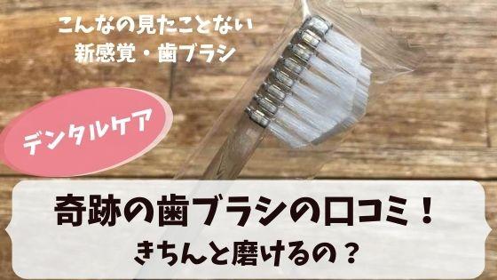 奇跡の歯ブラシの口コミ!奇跡の歯ブラシってきちんと磨けるの?
