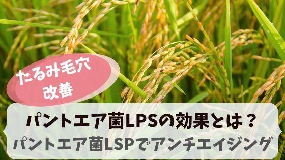 パントエア菌LPSの効果!パントエア菌LPSでアンチエイジング