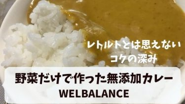 WELBALANCEを食べた口コミ!野菜だけで作った無添加健康レトルトカレー(5食)